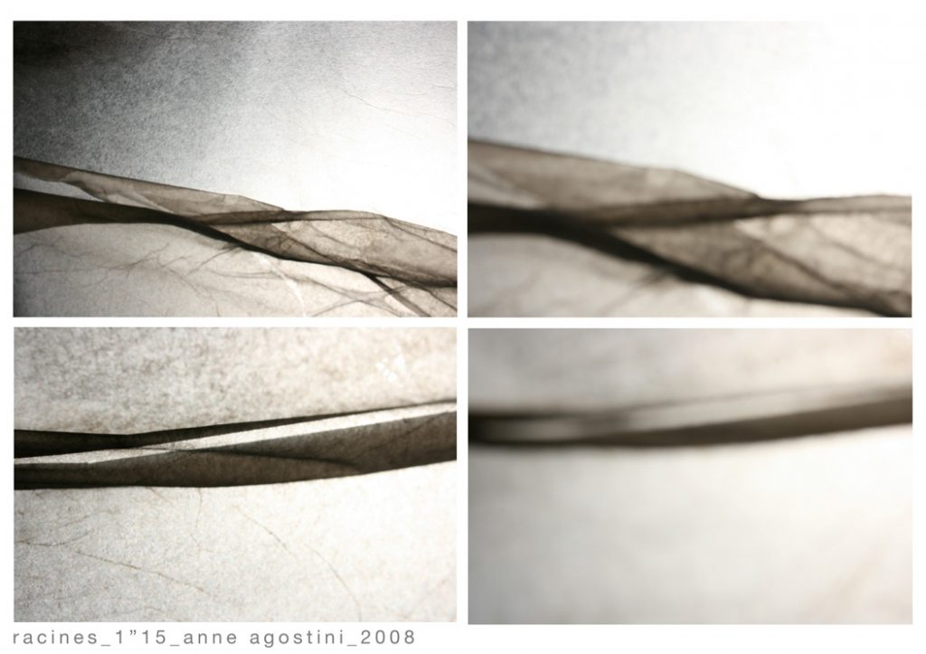 16-variations-racines_extraits-photos_anne_agostini_copyright