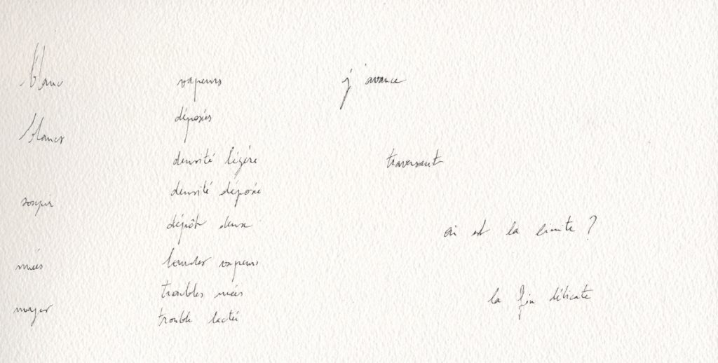 2-poeme-blancs_anne_agostini_copyright